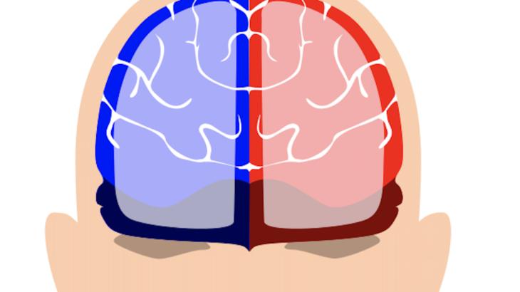 経頭蓋直流電流刺激 (tDCS)による作業記憶の向上